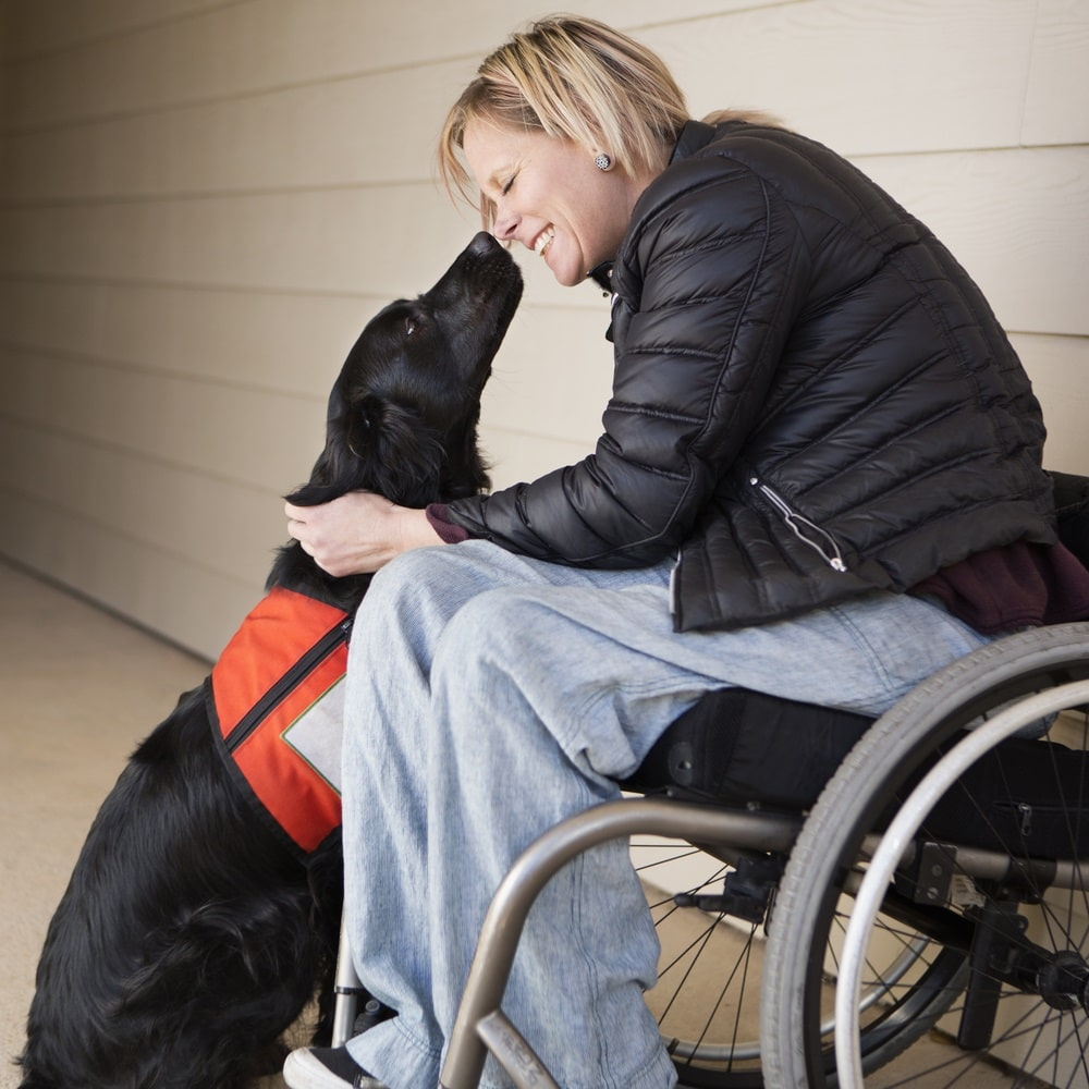 animals who help humans | enabling devices