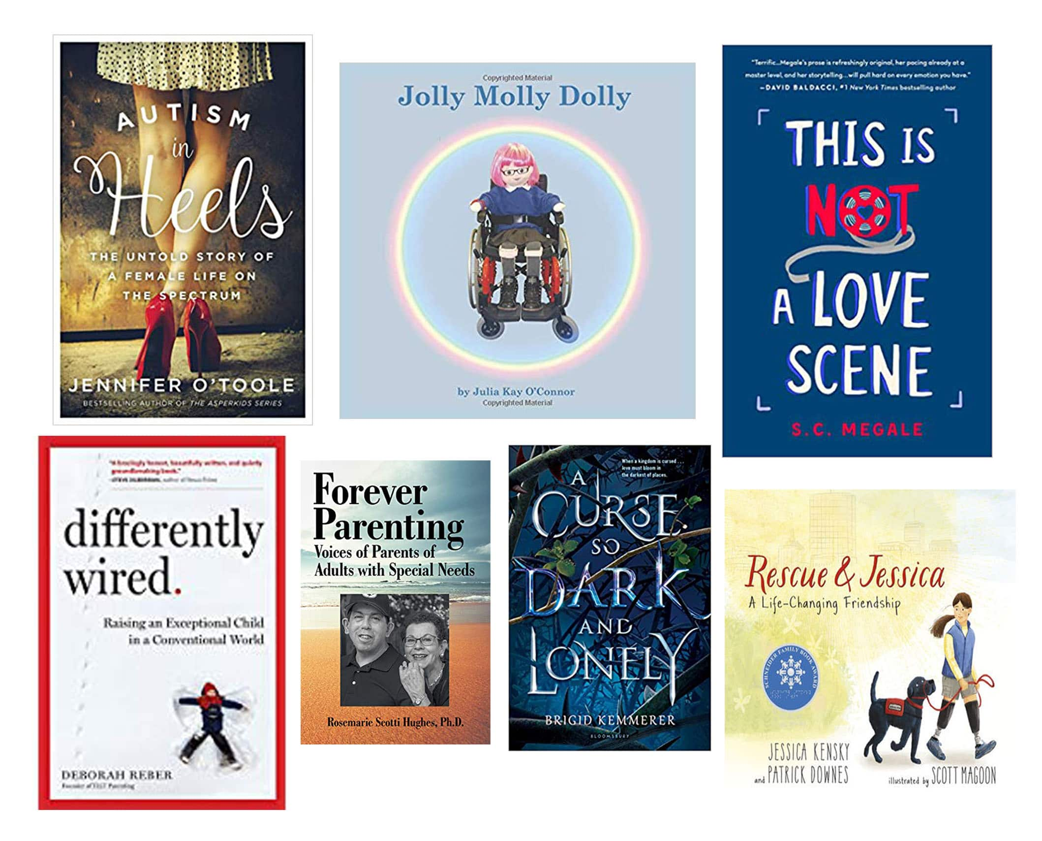 Images of Books about Disabilities