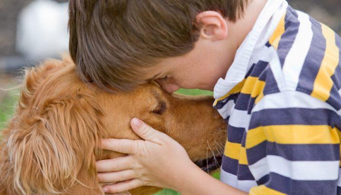 Little boy hugging a Golden Retriever dog