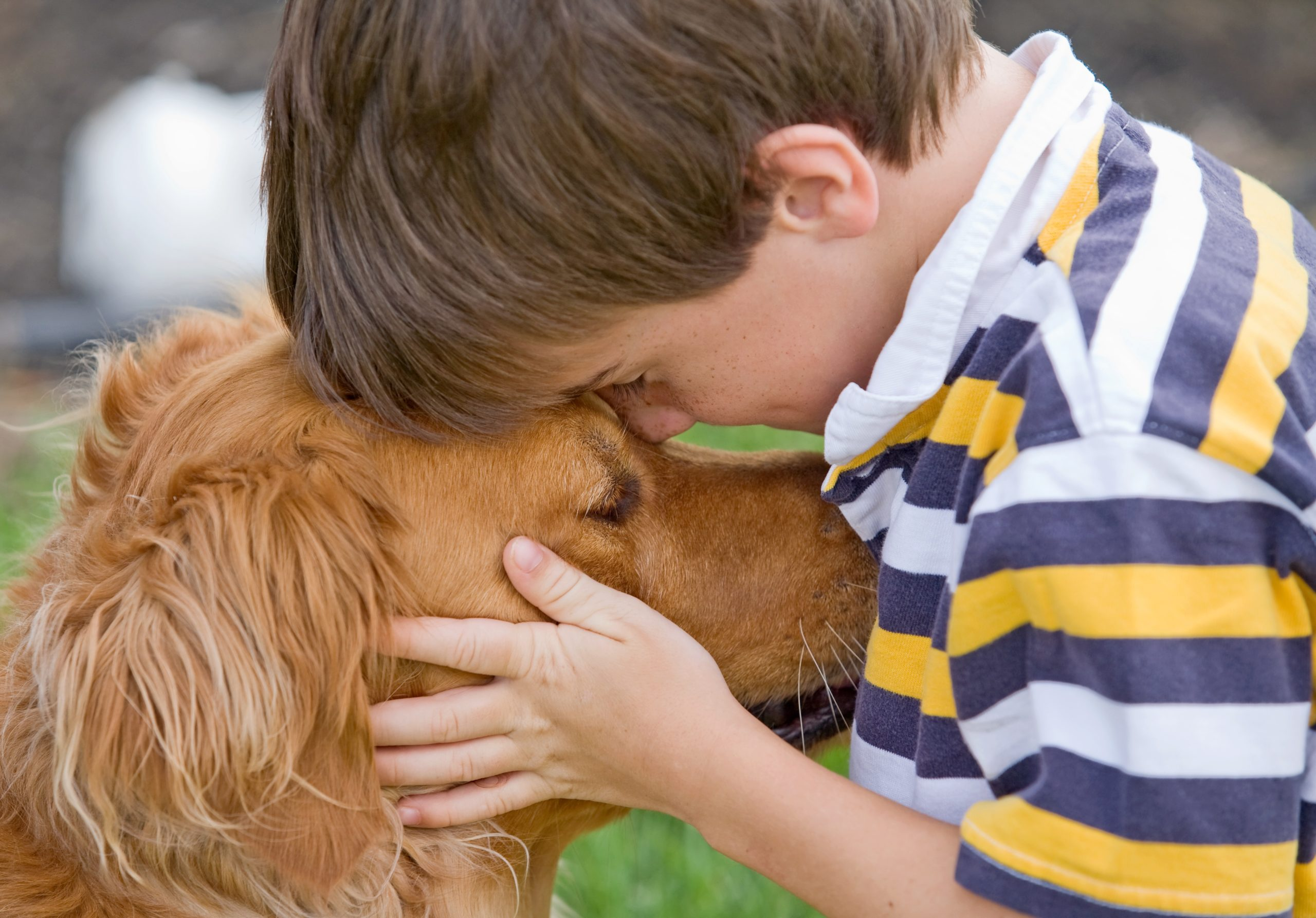 Little boy hugging a Golden Retriever dog