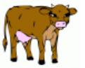 catch the cow app